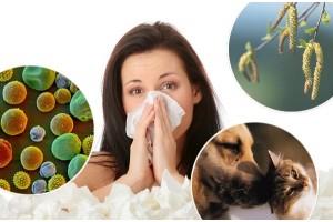 Эфирные масла против аллергии: 3 простых шага.