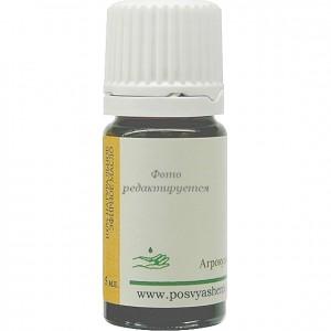 Равинтсара (Cinnamomum camphora) organic