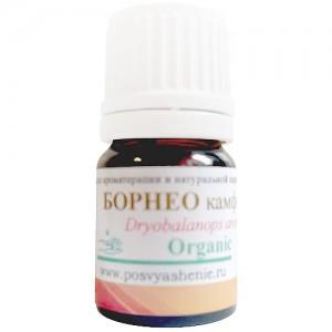 Борнео камфора (Dryobalanops aromatica) organic