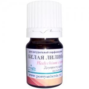 Белая лилия (Hedychium coronarium) абсолют