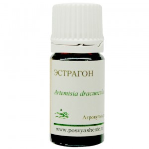 Эстрагон (Artemisia dracunculus)