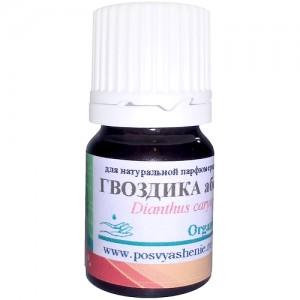 Гвоздика абсолют (Dianthus caryophyllus) organic