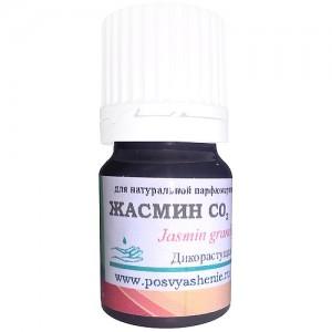 Жасмин СО2. (Jasminum grandiflorum)