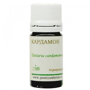 Кардамон (Elletaria cardamomum)