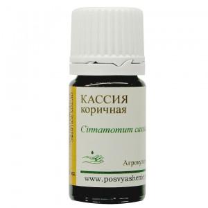 Кассия коричная (Cinnamomum cassia)