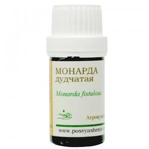 Монарда гераниольная (Monarda fistulosa)