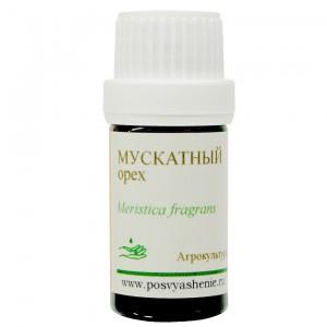 Мускатный орех (Myristica fragrans)