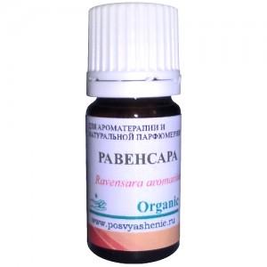 Равенсара (Ravensara aromatica) organic