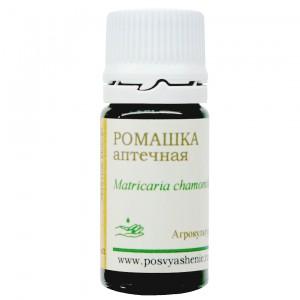 Ромашка аптечная (Matricaria chamomilla)